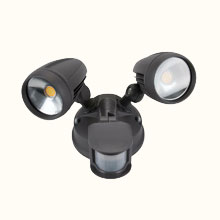 Sensor & Security Lights